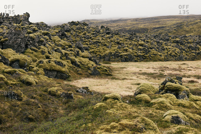 Rolling moss covered lava rocks and hills in Icelandic wilderness