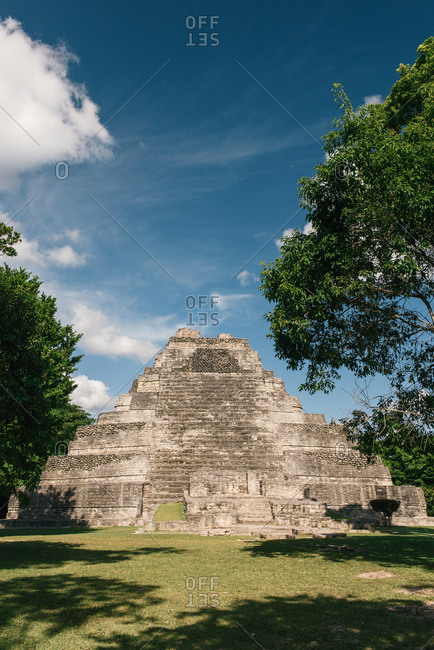 Chacchoben, Q.R., Mexico - July 3, 2016: A perfectly shaped Maya pyramid and blue skies at Chacchoben