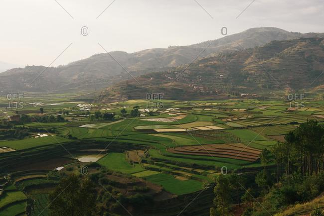 Rice terraces hug the valleys and hillside around central Madagascar