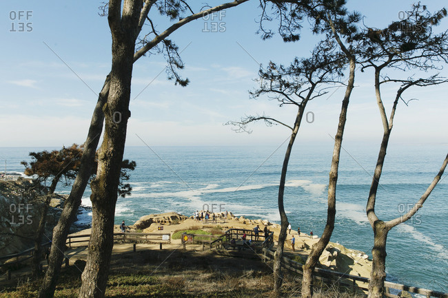 A scenic outlook near the ocean in La Jolla, California