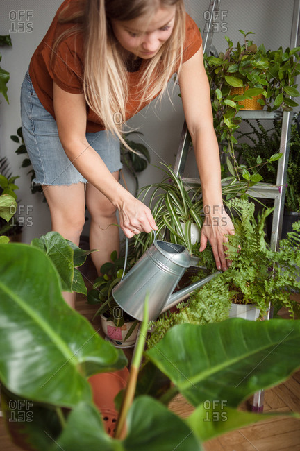 Woman watering plants on metal stepladder from watering can