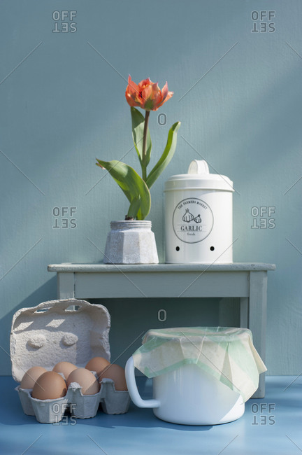 Germany- Carton of eggs- mug with DIY enameled cloth- tulip in jar and garlic container