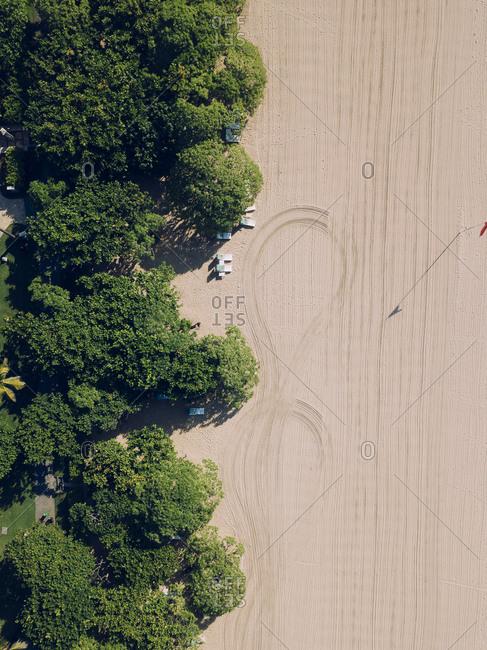 Indonesia- Bali-NusaDua- Aerial view of green trees stretching along sandy beach