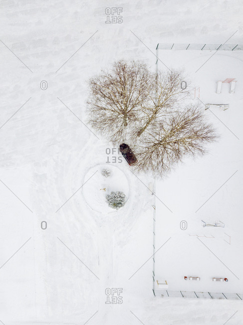 Russia- Leningrad Oblast- Aerial view of car parked under bare trees in winter
