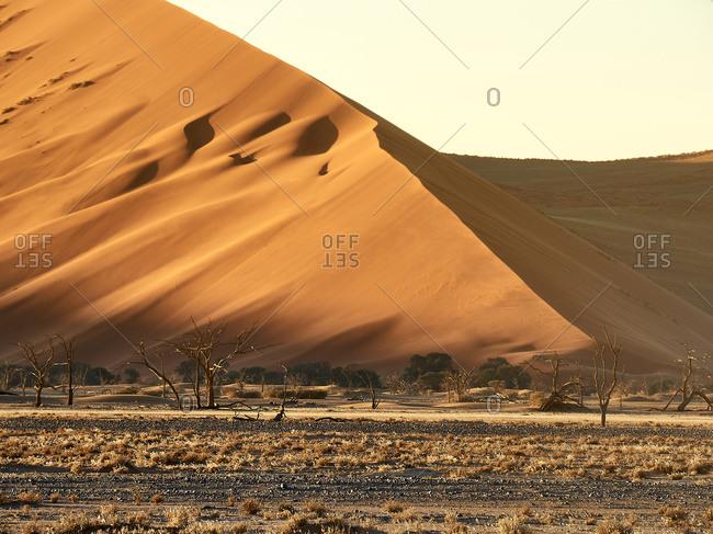 Sun hitting the sand of a dune- Sossusvlei- Namibia