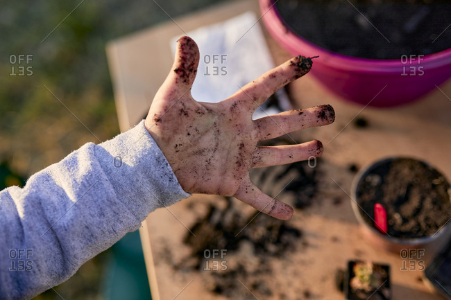 Close-up of boy showing his dirty hand from gardening