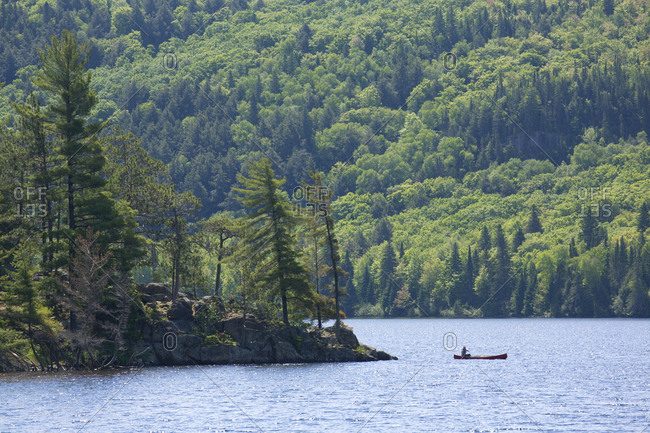 Man rowing canoe on lake in Algonquin Park, Ontario, Canada