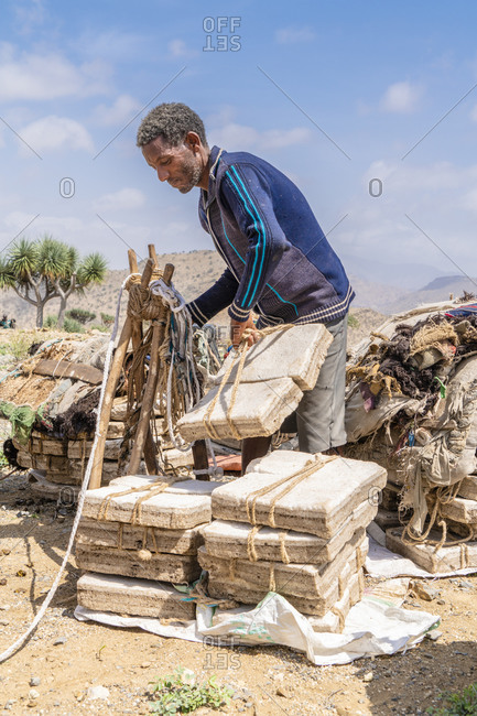 February 1, 2020: Miner picking up salt blocks extracted from salt flats, Dallol, Danakil Depression, Afar Region, Ethiopia, Africa