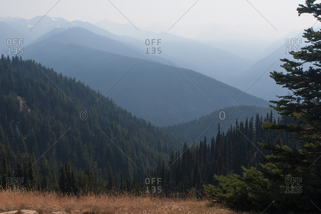 Mountains, Olympic National Park, UNESCO World Heritage Site, Washington State, United States of America, North America