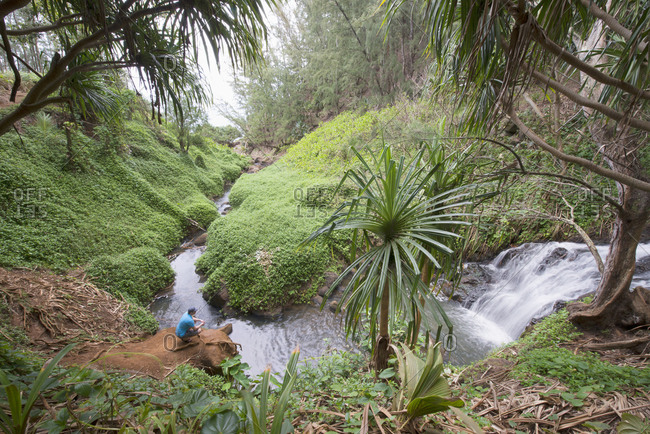 Man crouched by a waterfall on Kauai, Hawaii, United States of America, North America