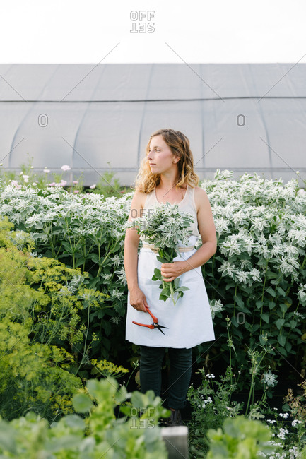 Caucasian woman holding a bouquet of fresh cut flowers in a field with a greenhouse behind