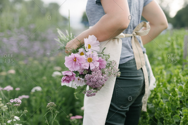 Caucasian woman with a white apron collecting flowers on a field