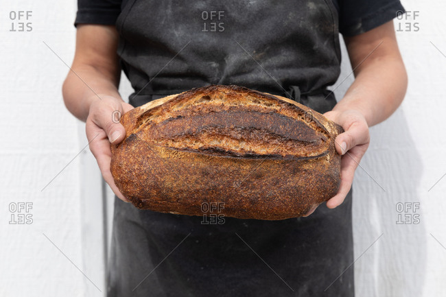 Hands holding a beautiful loaf of sour dough bread with a black apron and white background
