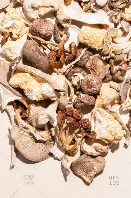 A pile of dried wild mushrooms on a pale background with harsh light