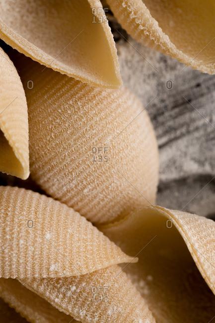 Close up of seashell pasta