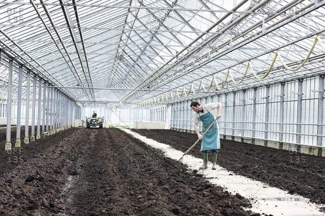 Germany- Bavaria- Munich- Mature man digging soil with garden fork in greenhouse