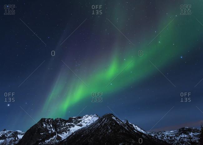 Norway- Lofoten- Polar lights (aurora borealis) on Gimsoy