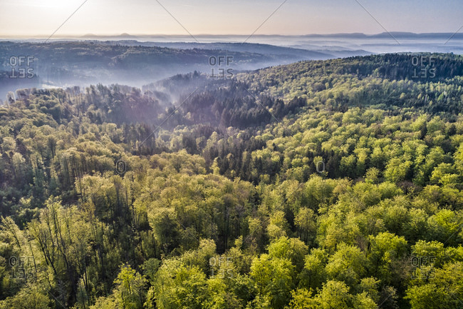 Germany- Baden-Wuerttemberg- Swabian Alb- Nassach Valley and Fils Valley- Aerial view of forest and fog