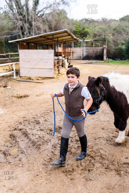 Boy in jockey suit and helmet leading roan pony while walking on sandy ground of dressage arena in equestrian school