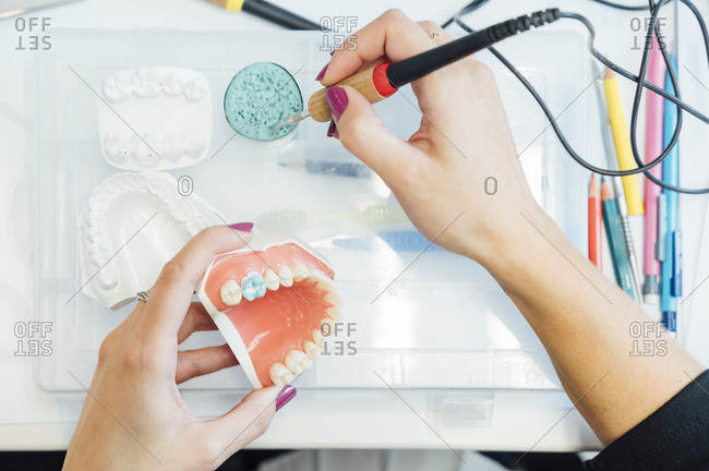 From above of crop student with artificial dental model and bur learning training in dental treatments during class in laboratory