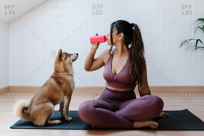 Loyal dog looking at female owner drinking water from plastic bottle while resting during yoga workout in modern light room