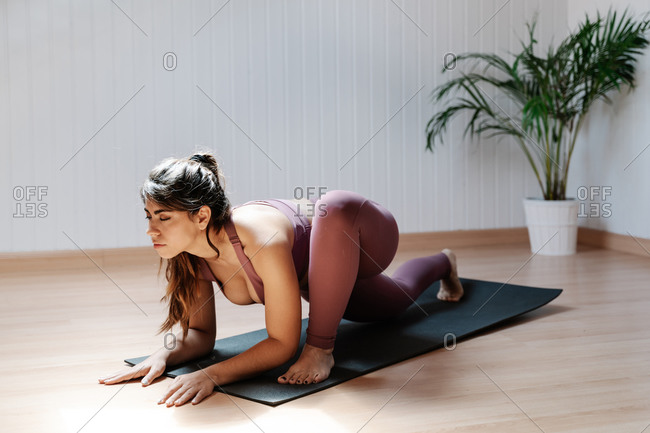 Side view of young slim female in sportswear performing Lizard exercise while working out during yoga session at home