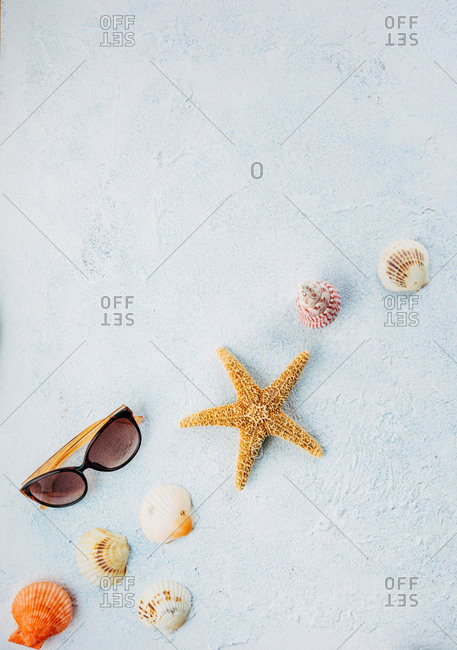 Top view of trendy sunglasses near dried starfish and small seashells on plaster surface on summer day