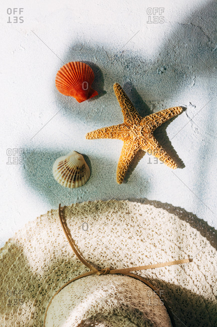 Trendy hat near seashells and starfish for summer vacation concept on plaster surface