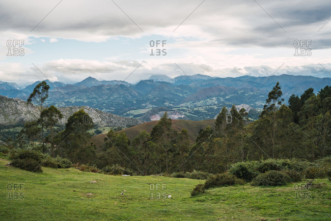 Majestic view of beautiful lush green valley with trees and colorful grass against overcast picturesque high mountains and cloudy sky in Alicante in Spain