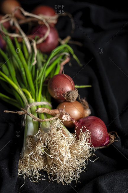 Fresh red and white onions on dark background. Vegan food. Food Ingredient