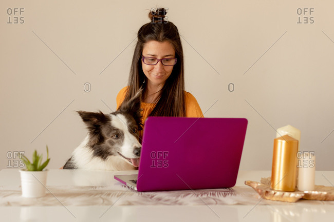 Cheerful woman playing with dog at home