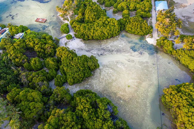 Aerial view of mangroves with a ship wreck, Huraa, North Male Atoll, Maldives, Indian Ocean