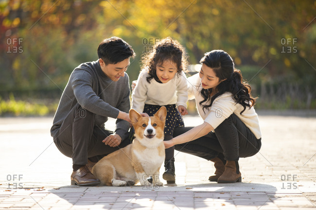 Happy young Chinese family and pet dog in park
