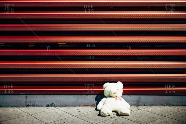 Lonely teddy bear at red wall