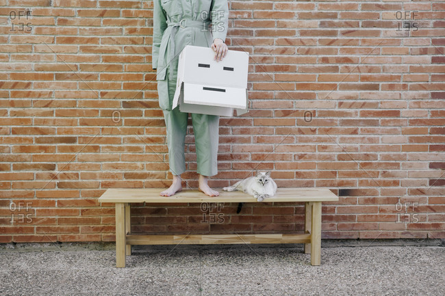 Woman standing on bench with cat in front of brick wall holding  cardboard box with sad face