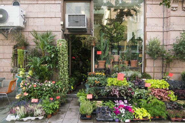 Florist shop at Sodermalm in Stockholm