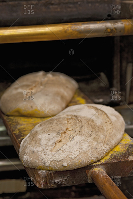 two loaves of bread about to be put into oven at bakery