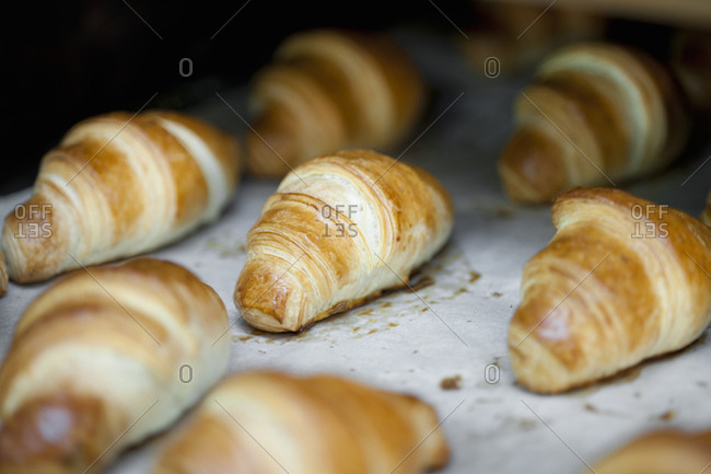 freshly baked croissants on a tray at bakery