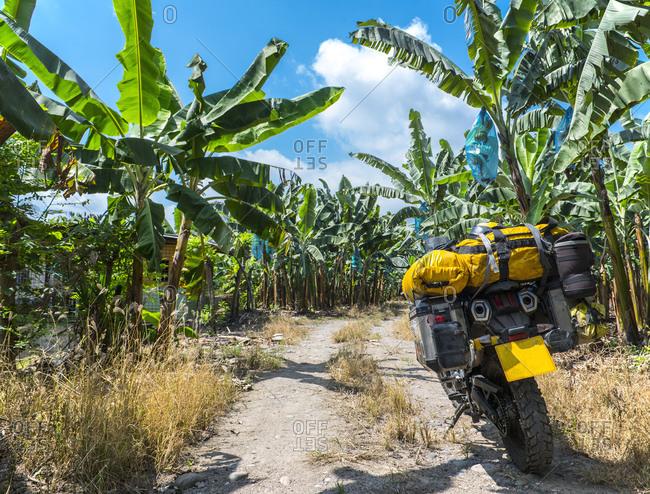 Touring motorbike parked at banana plantation in Ecuador