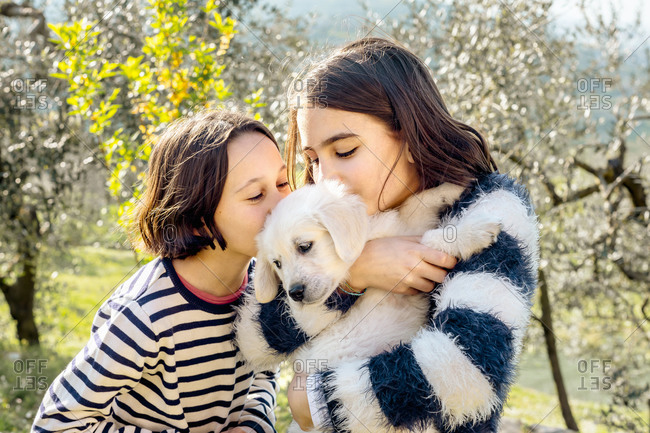 Two girls kissing a cute golden retriever puppy in orchard, Scandicci, Tuscany, Italy