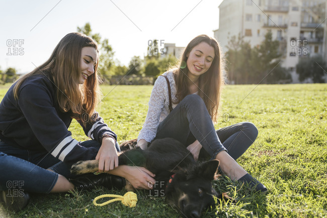 Sisters playing with dog in park