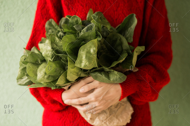 Woman holding fresh picked spinach bundle