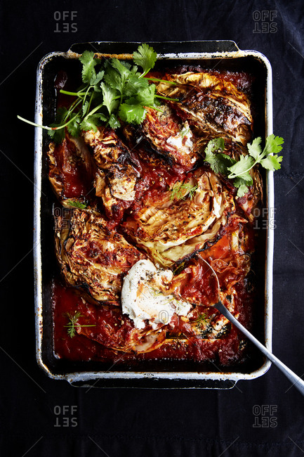 Cabbage roasted in tomato puree in a roasting tin with fresh coriander and cream cheese on a black background,