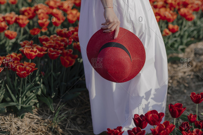 Crop view of woman in a tulip field holding red straw hat