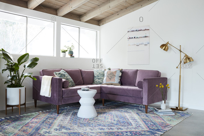 April 30, 2020: Purple velvet midcentury modern sofa in a room with exposed beam ceilings