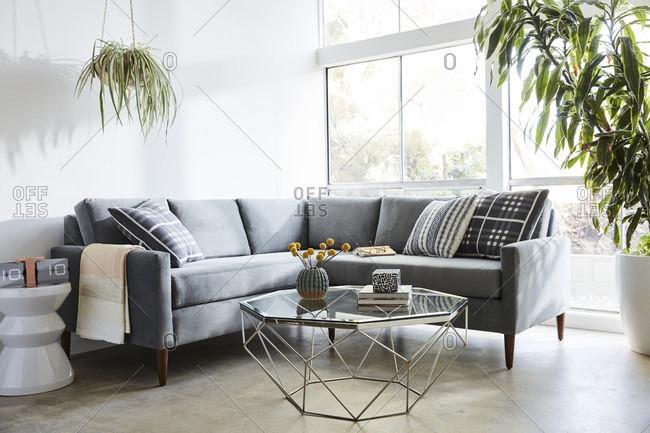 April 1, 2020: Gray velvet sectional sofa in modern living room with natural light