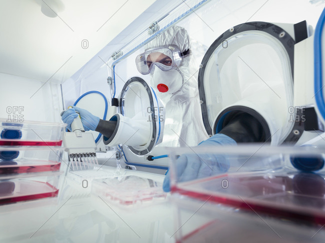 Scientist in medical research facility researching for Covid-19 vaccine using a sealed sterile chamber and external gloves and remote research techniques safety measures.