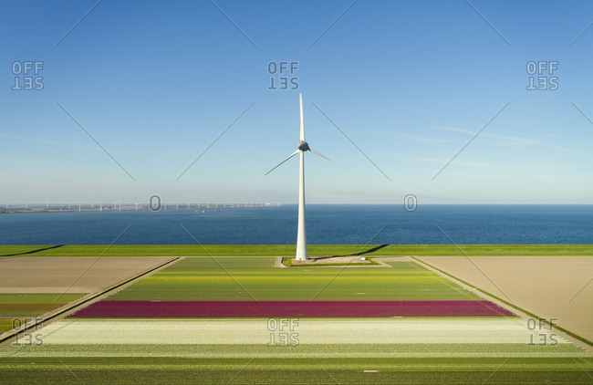 Early morning view of wind turbines and spring fields in coastal area of The Netherlands.
