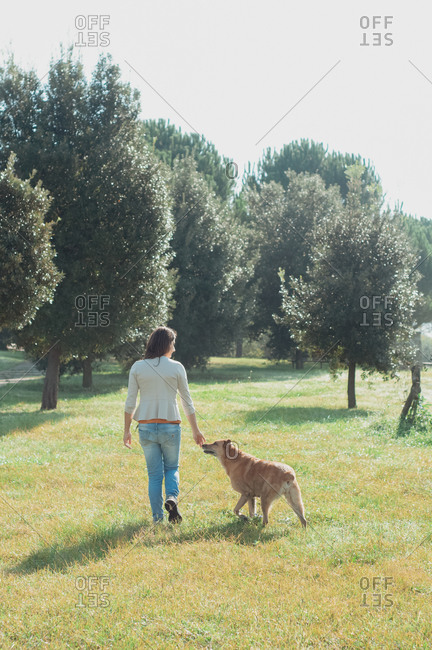 Rear view of woman walking with her dog in a park.