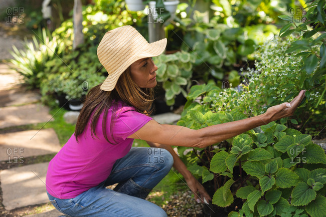 A Caucasian woman wearing a pink t shirt and a straw hat, enjoying time in a sunny garden, touching the leaves of plants